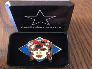 Ziggy Pin
